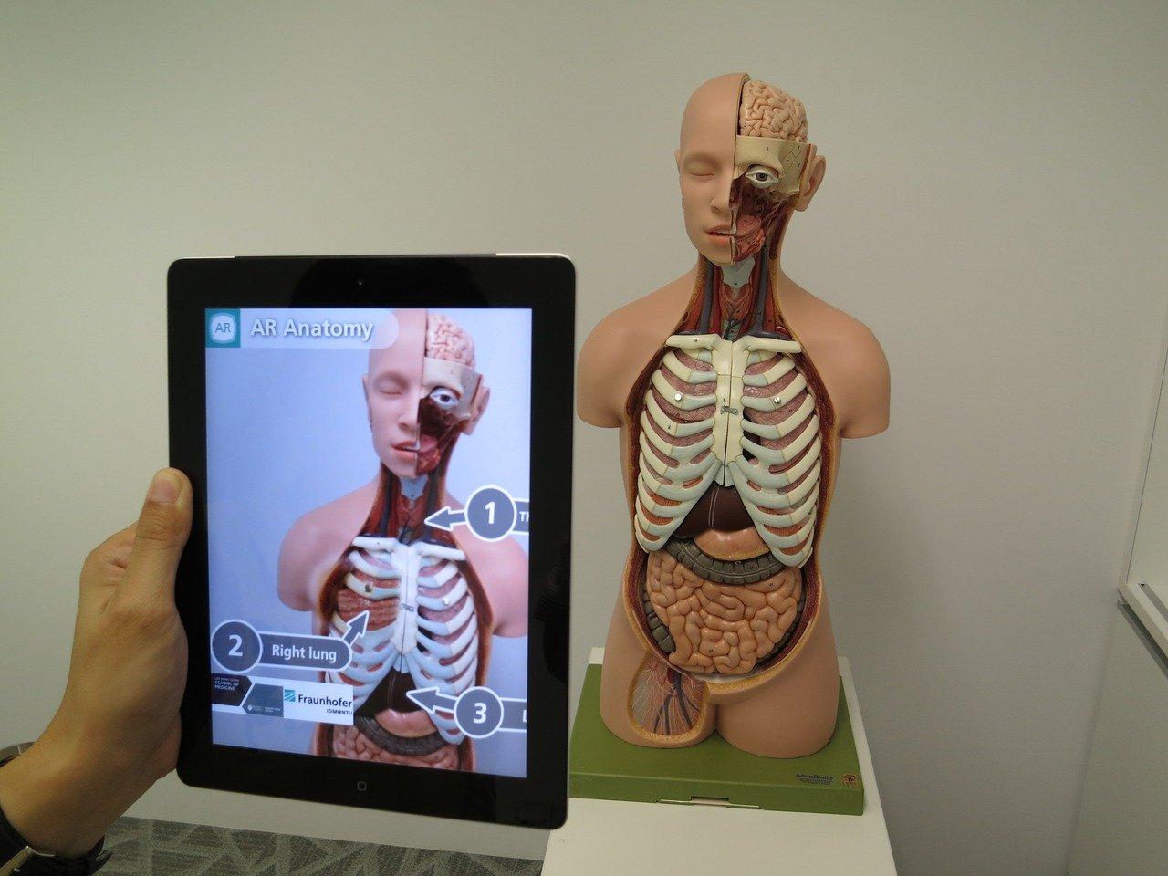 realidad-aumentada-cuerpo-humano